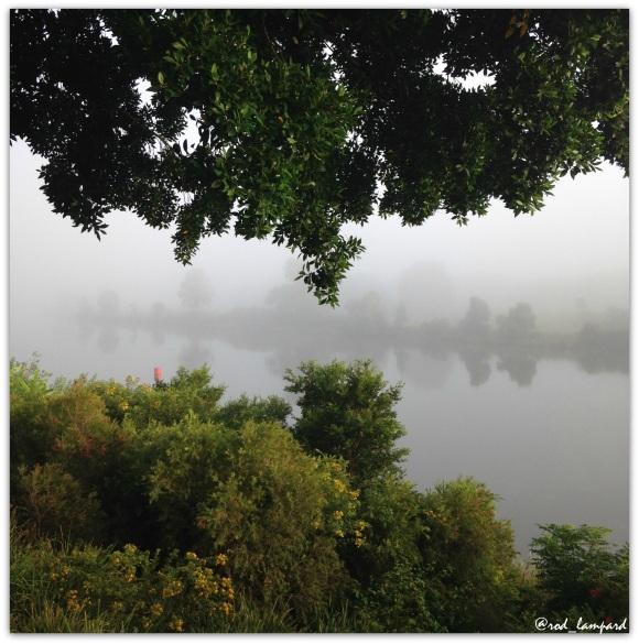 Mist 1 RL2016